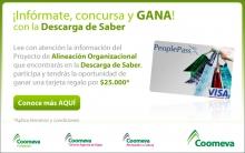p_Descarga2