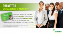 p_pagoPromotores