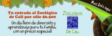 b_RYC_Zoo