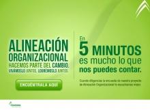 p_EncuestaAlineacion3