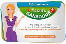 p_Col_Lealtad_Exp