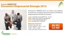 p_Sinergia2012