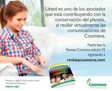 p_RevistaEne2013
