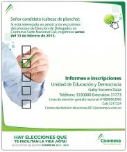 p_DelegadosCabezaPlancha