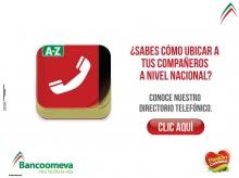 p_Banco_Directorio