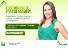 p_Copaso2