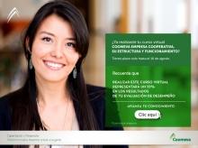 p_Intra_Estructura4