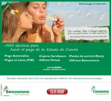 p_BANCO_Pago_Estado_Cuenta