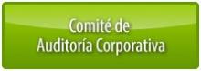 Comité_Auditoría corp