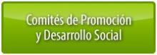 Comités de Promoción y Desarrollo Social