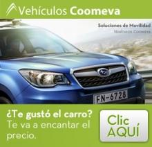 img_Vehiculos