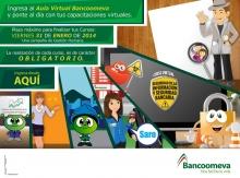 p_BANCO_VIRTUAL2_ENE2014