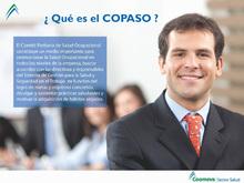 p_SALUD_Copaso_QUEES
