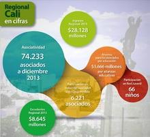 Reg Cali en cifras marzo 2014-01