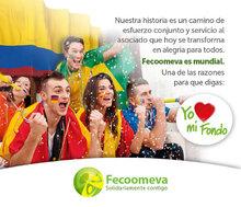 p_FECO_Mundial_JUN2014