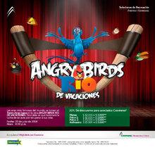 p_RYC_AngryBirds_JUL2014