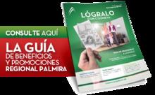 442301_palmira